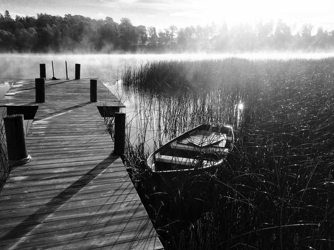 Black And White Nature Nature_collection EyeEm Nature Lover Early autumn morning, Sweden