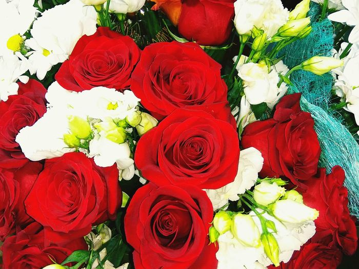 Flower Rose - Flower Bouquet Variation Red Full Frame Multi Colored Freshness Petal Fragility Nature No People Flower Head Beauty In Nature Backgrounds Outdoors Growth Birthday Celebration Rose♥ Red Chrysanthemum Beauty In Nature Roses🌹 Close Up Birthday