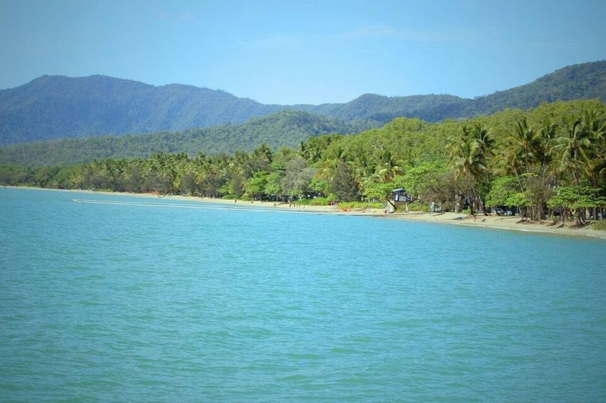 Days at the beach Beginnerphotographer Palm Trees Cairns Nautre Beach Sunny Afternoon Blue Sky Bluewater