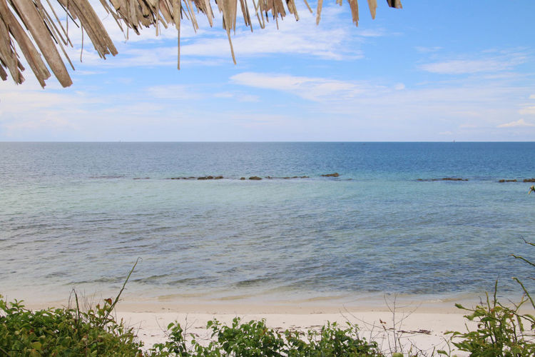 Serene Ocean View Beach Blue Sky Day Horizon Over Water Nature No People Outdoors Sand Scenics Sea Sky Tranquility Turquoise Water Water