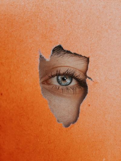 Close-up eye peeking through torn orange paper