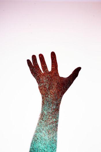 Human Hand Palm White Background Studio Shot Silhouette Stop Gesture Human Finger Close-up Handprint Finger Index Finger Hand Sign Body Part Hand