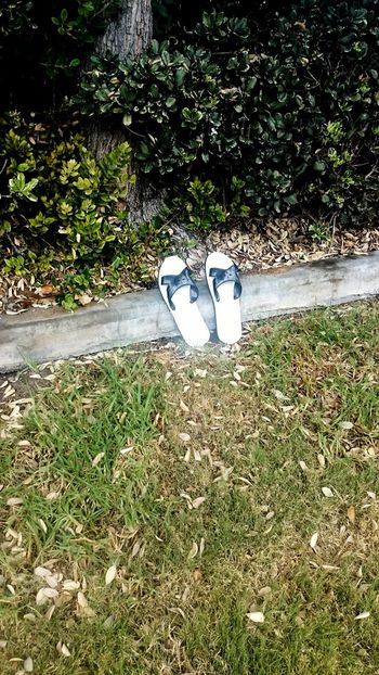 Random, flipflops, found, trail, Nature Grass Day Outdoors No People Green Color Plant Growth EyeEmNewHere