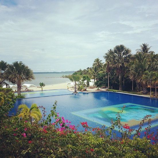 The view from our room. Work Travel Outoftown Trip quezonprovince view swimmingpool beach resort