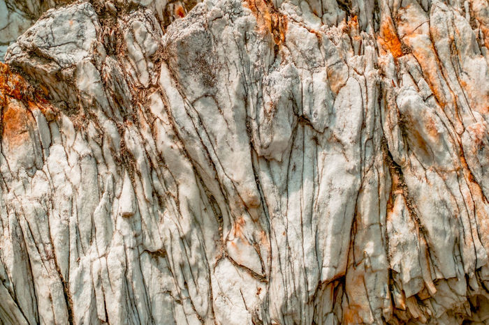 Natural white rock with orange spots Natural Beauty Rock Formation Stone Formation Ancient Backgrounds Close-up Day Full Frame Natural Background Nature No People Orange Spots Outdoors Pattern Rocks Rough Textured  Tree White Rock White Stone