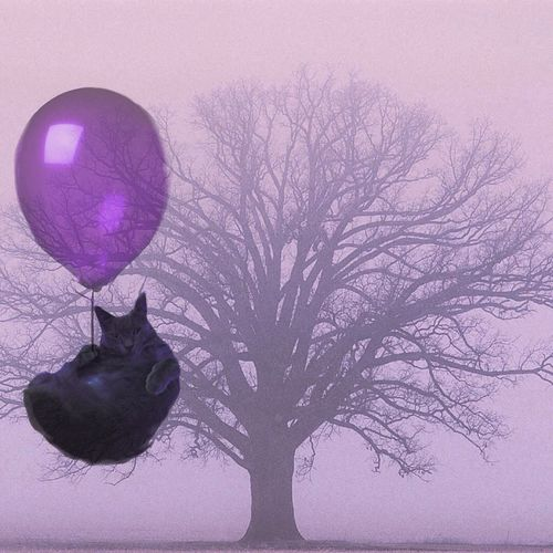 Adventure Ballon Pastel Power Pets Playful Cat Purple Softness Surrealist Art Winter