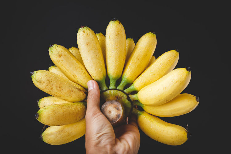 Fresh little bananas ASIA Banana Burlap Dark Eating Little Banana Nature Vietnam Delicious Food Food And Drink Freshness Fruit Fruit Photography Healthy Eating Healthy Food Indoors  Nutrition Old Wood Ripe Sweet Vitamin Yellow