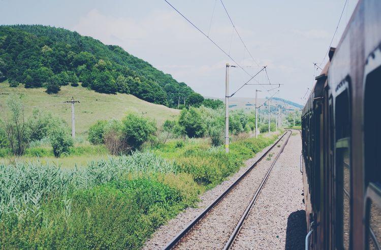 Train Railway Landscape Rural Scenes Traveling Public Transportation Transportation Wagon  Windows Trees