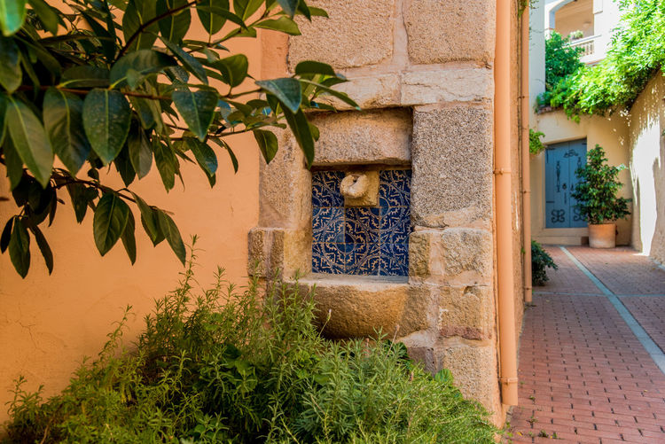 Begur Costa Brava Nature SPAIN Summertime Architecture Beauty In Nature Building Exterior Built Structure Corner Green Color Growth Leaf Nature Nature_collection No People Outdoors Plant Potted Plant Street Streetphotography Summer Travel Destinations Tree Village