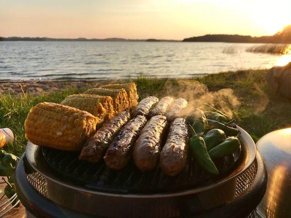 Last summer 2018 picnic