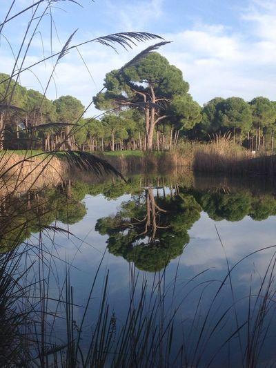 Golfing Belek Antalya Alanya
