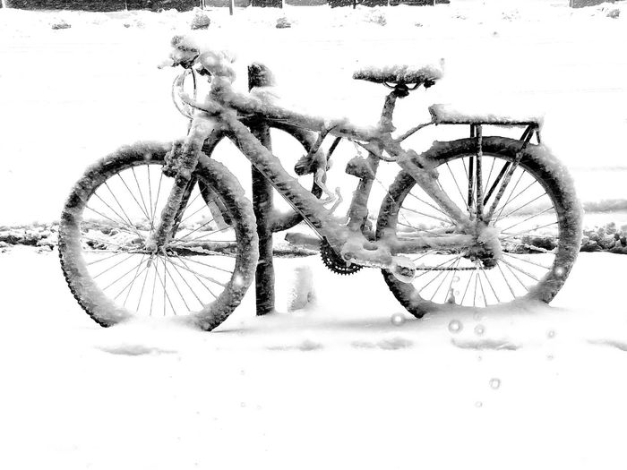 Boston Blizzard Bike Coffee Blizzard Grey Sky Deserted Street Bicycle Winter Adventure Tire Snow Land Vehicle Sky Mountain Bike