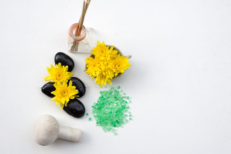 High angle view of yellow flowering plant on white table