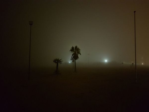 Outdoors Fog Foggy Nightshot Moody Colours No Filter Seaside Sea At Night Beach Walk Walking Around At Night No Stars Shadows Shadows & Lights Natural Sepia Palm Trees Sand Feet On The Beach