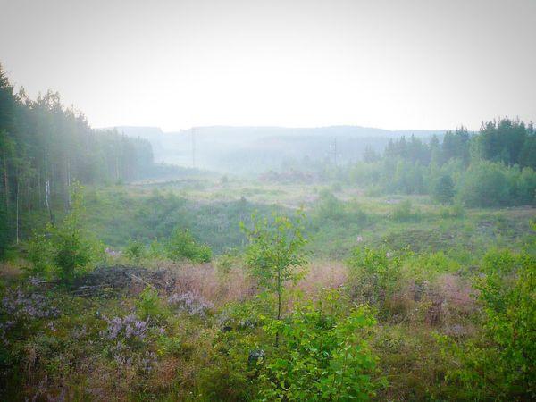 карелия Красоты природы
