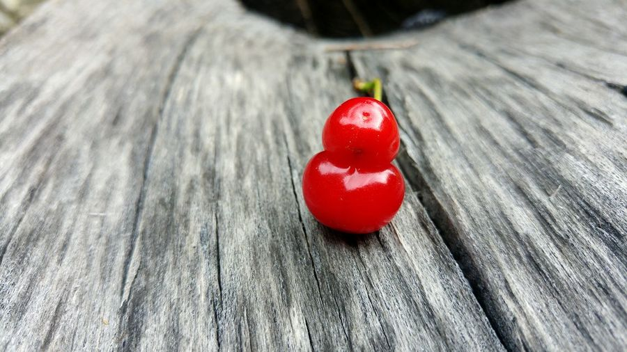 Close-up of sour cherry on wood