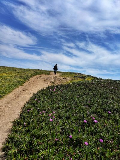 Rear view of person hiking on  ocean cliff path against sky