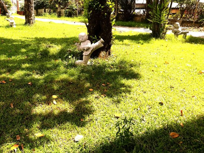 Tree Green Color Grass Growth Sunlight Outdoors Day Park - Man Made Space Nature Field No People Beauty In Nature Statues/sculptures Martial_arts Manila Philippines Philippines TaoistTemple