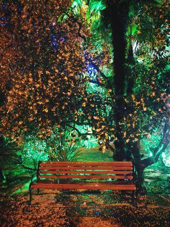 Design Autumn Colors Cityscapes