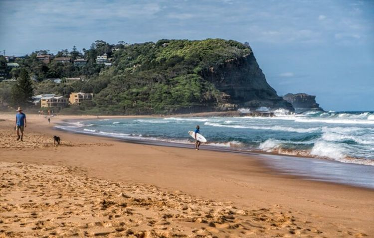 North Avoca Australia Nsw Central Coast Avoca Avoca Beach North Avoca Beach Beachphotography Beach Life Waves Surfer People Dog Landscape Colorphotography Fujixpro2 FujifilmXPro2 Fujiusers