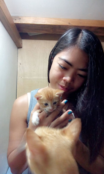 Cute kitten, mommy cat wont allow me to hold and cuddling up with her kitten...