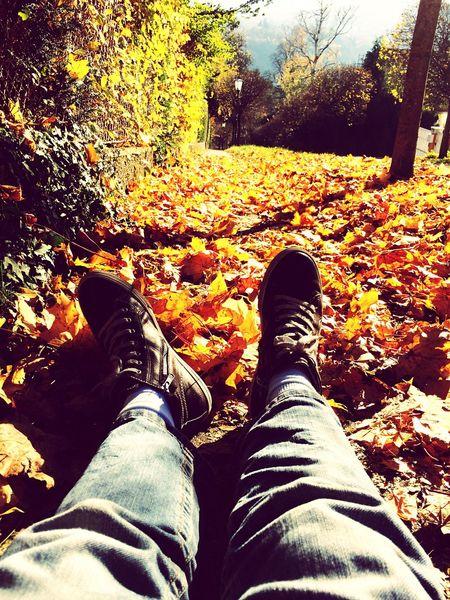 Chilling Autumn