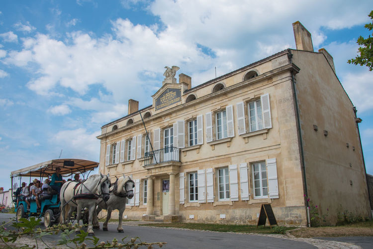Napoleon's