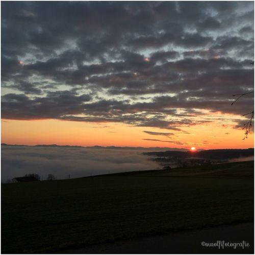 ...so schön kann die Sonne im Dezember am Hochrhein untergehen. 💕💗 Monique52 The Purist (no Edit, No Filter) Himmel