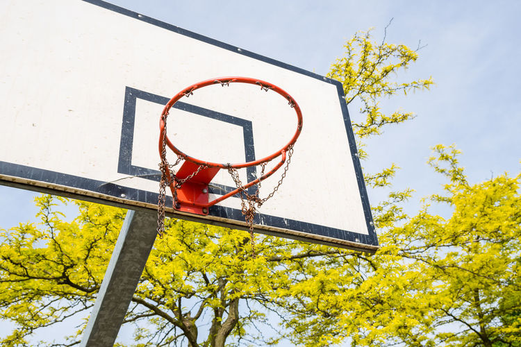 Basketball Basketball - Sport Basketball Hoop Close-up Court Low Angle View Net - Sports Equipment No People Outdoors Sky Sport Tree