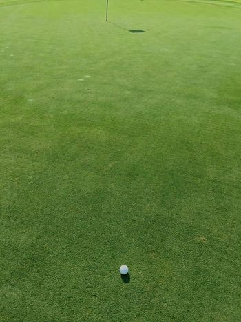 Golf Is My Life ⛳️ Golf Golf Course Green - Golf Course Green Color Grass Sport Golf Ball High Angle View Putting Green Leisure Activity Day Competition No People Playing Field Outdoors Golf Club Golfer