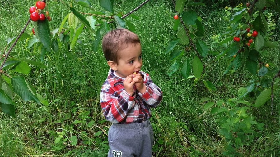 My Boy ❤ Eating Fruits