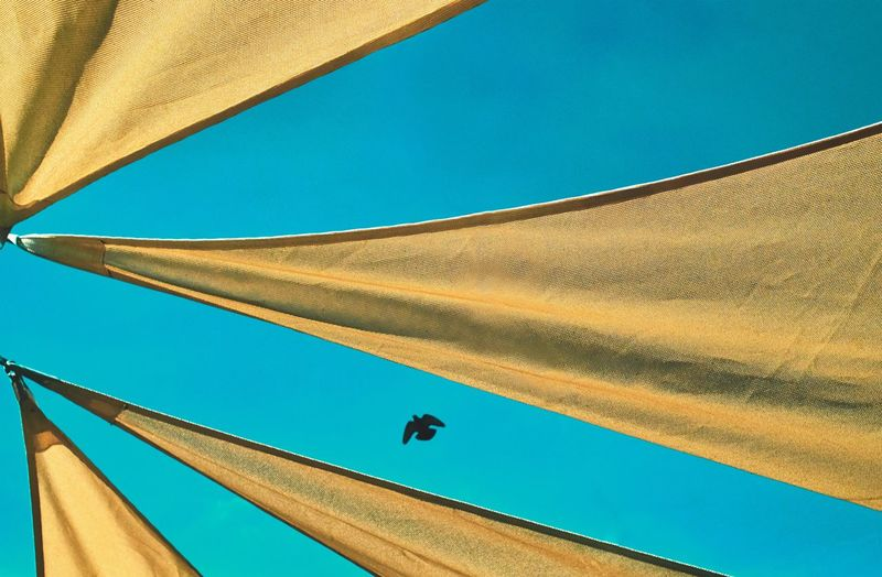 Low angle view of bird flying over parasol against clear blue sky