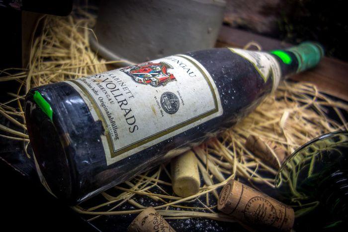 1904 Winee & Food! Wine Wineenthusiast Wine Not