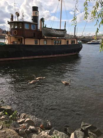 Skeppsholmen, Stockholm, Sweeden Tranquility Water