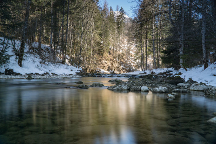 Cold Days Steiermark Austria Grundlsee Bad Aussee Winter Water Tree Tranquility Plant Beauty In Nature Cold Temperature No People Scenics - Nature Nature Tranquil Scene Forest Reflection Snow Day River Land Non-urban Scene Outdoors Stream - Flowing Water Flowing Water Surface Level Flowing