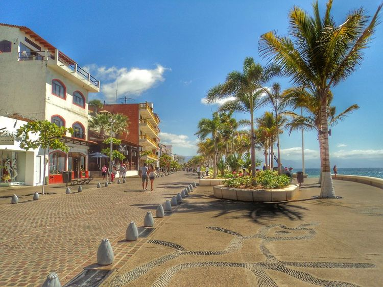 Puerto Vallarta down town, Jalisco Mexico. Vacations Sunlight Travel Palm Tree Outdoors Beach Tranquility Best Eyeem Pics Mexico Travel First Eyeem Photo Mexico Best Of EyeEm Best Eyem Photo Beachside Day