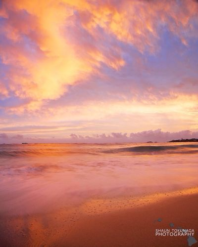 Water_collection Sunrise Pink Hawaii