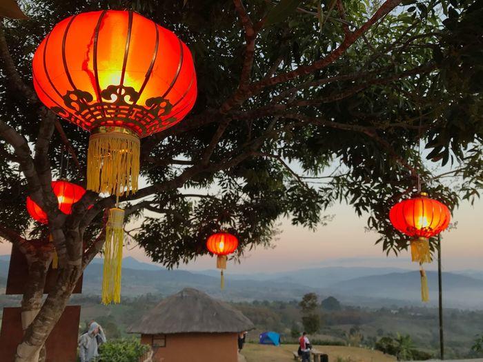 Miles Away Red Lanterns Lantern Chinese New Year Chinese Village Yunlai Pai Maehongson Thailand Northern Thailand