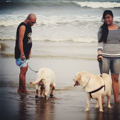 Dog Pets Animal Beach Two People Friendship Water Loyalty Domestic Animals Animal Themes People Outdoors Bonding Day Beach Photography Beach Time Beach Walk Weekend Activities Weekend Getaway Labrador Labrador Retriever LabradorRetriever LabradorLove Beach Holiday Seashore