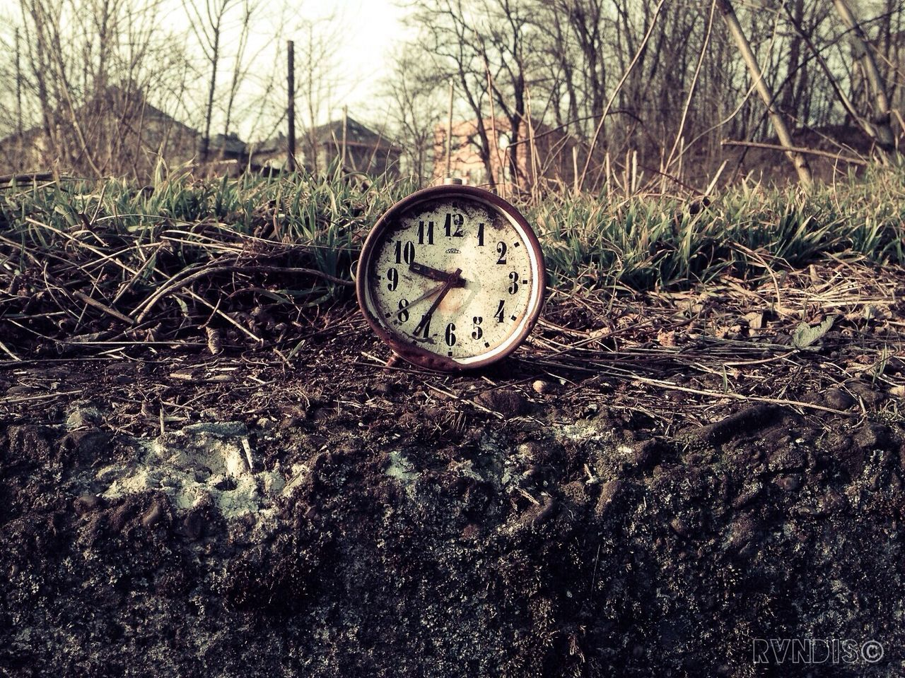 time, clock, minute hand, hour hand, clock face, no people, bare tree, day, tree, outdoors, nature, navigational compass, close-up