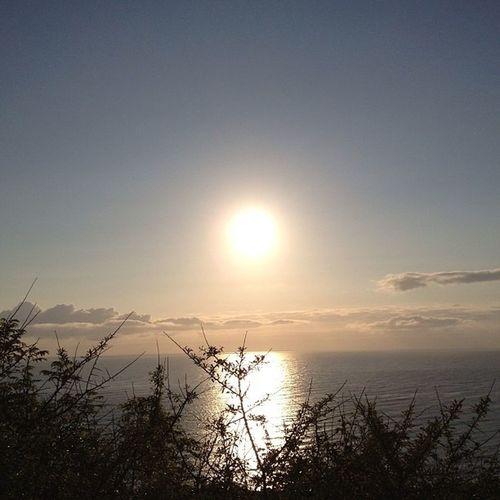 Sun_collection,