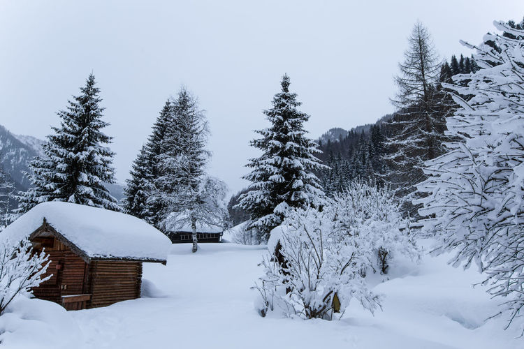 Snow Covered Houses And Trees Against Sky