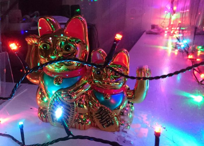 Multi Colored Illuminated Night Christmas Celebration No People Waving Kitties Metallic Vibrant Colours We Come In Peace Cats Indoors  Nightphotography Warm Colours