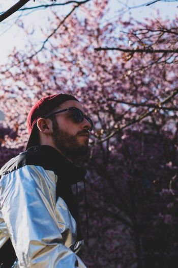Low angle view of young man against cherry blossom
