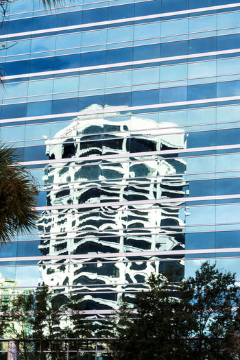 Refections in the city Architecture Building Building Exterior Built Structure Day Low Angle View No People Outdoors Palm Tree Reflections Reflections In The Glass Windows Sky