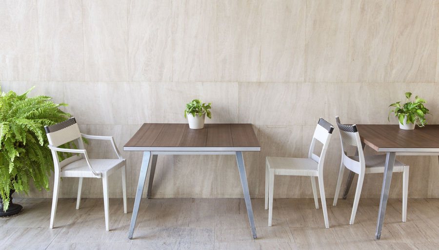 beautiful modern furniture and plant. Seat Chair Plant Table Indoors  Potted Plant Home Interior Nature No People Flooring Furniture Absence Wood - Material Wall - Building Feature Empty Flower Flowering Plant Day Arrangement Domestic Room Setting Houseplant Flower Pot Plant Green Planthouse Modern