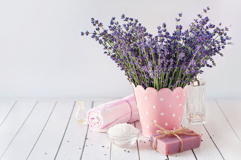 Close-up Day Flower Flower Head Fragility Freshness Indoors  No People Pink Color Purple Table Vase Wood - Material
