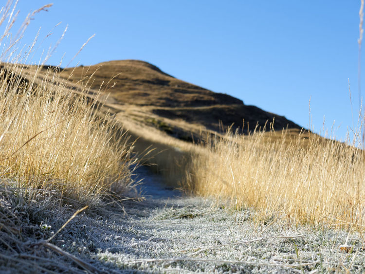 Autumn Beauty In Nature Blue Clear Sky Close-up Day Frost Frosty Grass Grassland Ice Landscape Morning Mountain Mountains Nature No People Outdoors Tranquil Scene