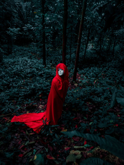 Red toy on field in forest