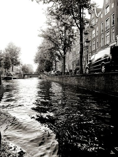 Amsterdam canals Water Tree City Wet Reflection Flood Sky Building Historic Residential Structure Building Exterior TOWNSCAPE Canal Architecture